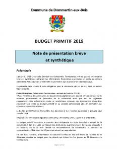 Budget Primitif 2019 – Note synthétique